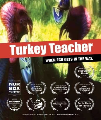 Turkery Teacher Movie Poster